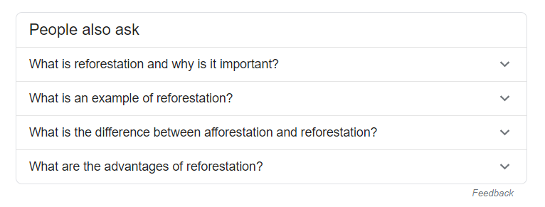 People also ask in Google Search Results